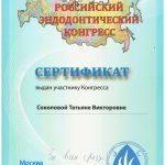 sert-sokolova2